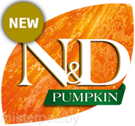 50_47_nd-pumpkin-logo-new.png