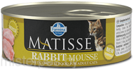 Консервы Farmina Matisse Cat Mousse Rabbit